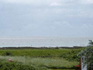 Blick von Jan's Hof - Hochwasser im Watt