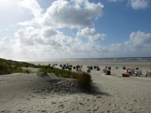 Looger Strand